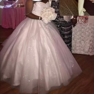 2017 Disney Cinderella Ball Wedding Gown